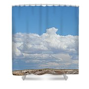 Barren Horizon Shower Curtain