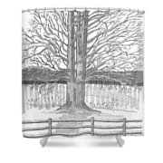 Barrytown Tree Shower Curtain