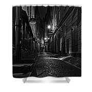 Bars In The Alley Shower Curtain