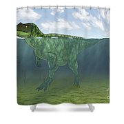Baryonyx Swimming Amongst Some Shower Curtain