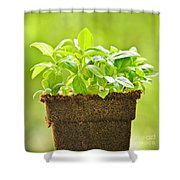 Basil Shower Curtain