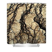 Basin Water Runoff Shower Curtain