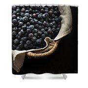 Basket Full Fresh Picked Blueberries Shower Curtain by Edward Fielding