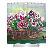 Basket Of Pansies Shower Curtain