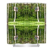 Basketball Forest Court Reflection 1 Shower Curtain