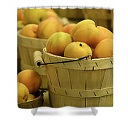Baskets Of Apricots Squared Shower Curtain by Julie Palencia