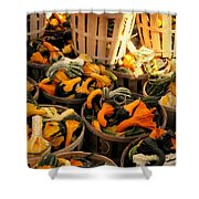 Baskets Of Gourds Shower Curtain