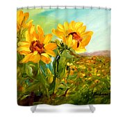 Basking In The Sun Shower Curtain by Barbara Pirkle