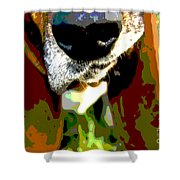 Basset Hound -all Nose And Ears2 Shower Curtain