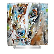 Basset Hound - Watercolor Portrait.1 Shower Curtain