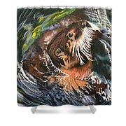 Bath Time Shower Curtain