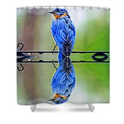 Bath Time Reflection Shower Curtain