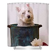Bath Time Westie Shower Curtain