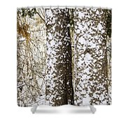 Battered By Winter Blizzard Shower Curtain