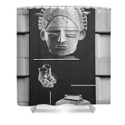 Battery Park Art In Black And White Shower Curtain