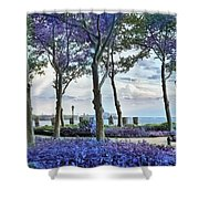 Battery Park In The Spring Shower Curtain