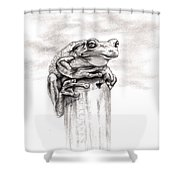 Batting Coach Shower Curtain by Kathleen Kelly Thompson