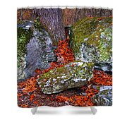 Battlefield In Fall Colors Shower Curtain