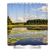 Bay At The Waskesiu Lake With Lily Shower Curtain