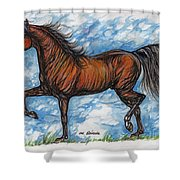 Bay Horse Running Shower Curtain