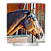 Bay In Stall Shower Curtain