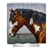 Bay Native American War Horse Shower Curtain by Crista Forest