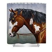 Bay Native American War Horse Shower Curtain