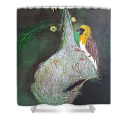 Baya Weaver At Nest Shower Curtain