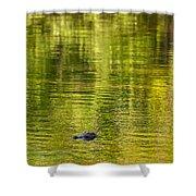 Bayou Dream Shower Curtain
