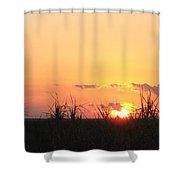 Bayou Sunset Shower Curtain