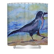 Bayside Strut Shower Curtain