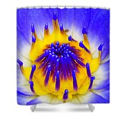 Blue Brilliance Number Two Shower Curtain