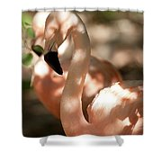 Be Cool Shower Curtain
