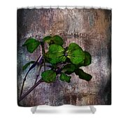 Be Green Shower Curtain