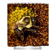 Bee Pollunating Shower Curtain