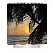 Beach At Sunset 1 Shower Curtain