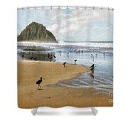 Beach Birds Impasto Shower Curtain