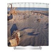 Beach Brick Shower Curtain