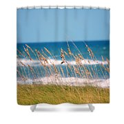 Beach Front 001 Shower Curtain