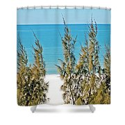 Beach Front View Shower Curtain