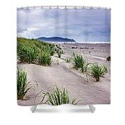 Beach Grass Shower Curtain by Robert Bales