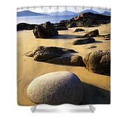 Beach Of Gold Shower Curtain