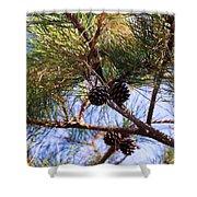 Beach Pine Shower Curtain