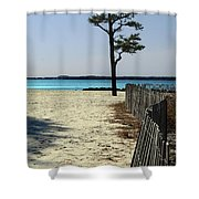 Beach Pine Shower Curtain