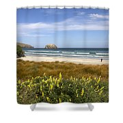 Beach Scene Otago Peninsula South Island New Zealand Shower Curtain