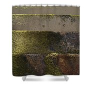 Beach Steps 1 Shower Curtain