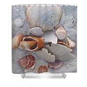 Beach Treasures 2 Shower Curtain