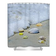 Beach Treasures Shower Curtain
