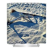 Beach Treasures Shower Curtain