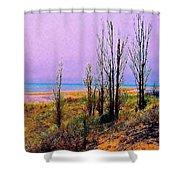 Beach Trees Shower Curtain